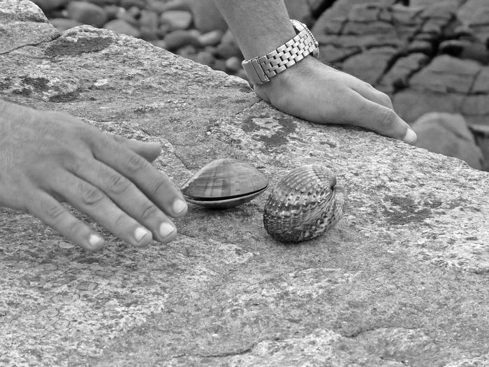 Cropped hand of person touching clam on wall outdoors