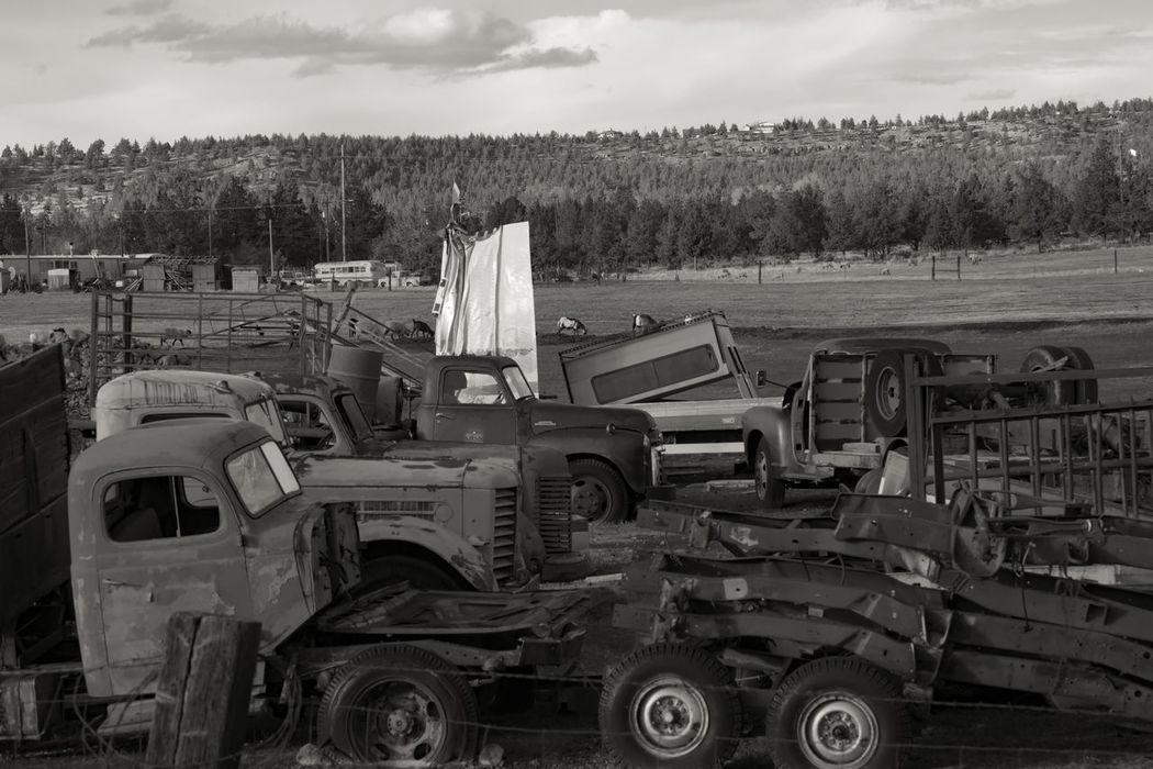 Old junk vehicles on a ranch in a small town in northeastern California, USA. California Modoc County Northeastern Japan USA United States Abandoned Alturas Car Cloud - Sky Damaged Day Destruction Field Land Vehicle Landscape Nature No People Outdoors Sky Transportation Tree Trucks