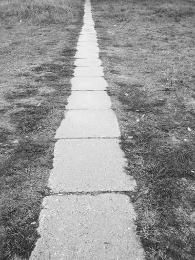 Concrete old tile path road on the grass Tile Tiles Old Tiles Concrete Concrete Tiles Old Tiles Old Track Old Tracks Road Grass Black And White Road Backgrounds Sunlight Grass LINE White Line Tire Track Empty Road Roadways Road Marking Country Road