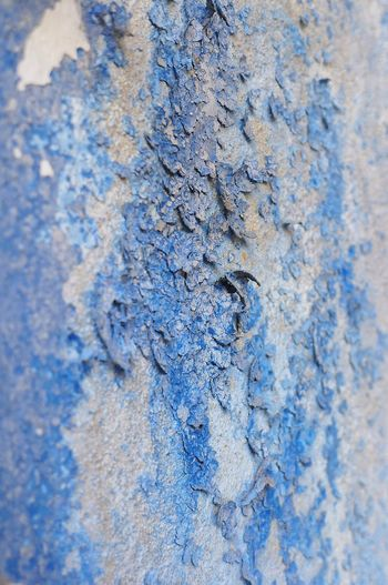 Wall Wall Textures Peeling Walls Abstractphotography Blue Color Daylight Outdoors Photograpghy  Detailsofdecay Details And Colors No People Macro Surfaces And Textures