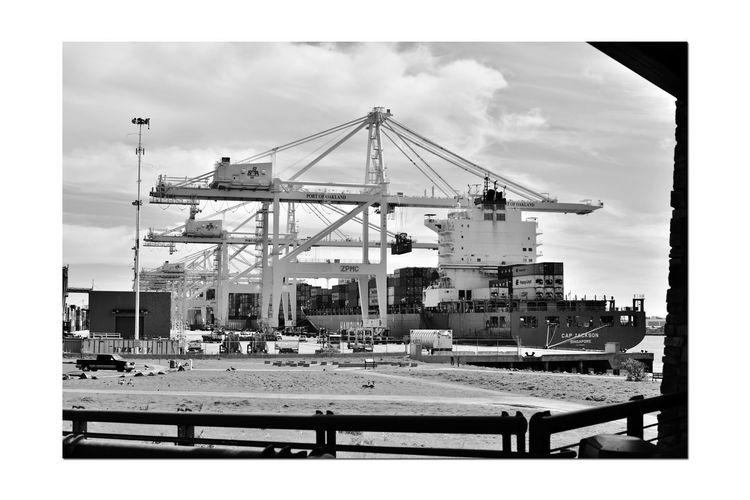 Middle Harbor 3 Port Of Oakland,Ca. Middle Harbor Observation Tower View Port Cranes Machinery Dockyard Freighter Shipping Containers Maritime Freight Transport Import/export Monochrome_Photography Monochrome Black & White Black & White Photography Black And White Black And White Collection  Loading Dock Keys To The Economy Trucks Machine