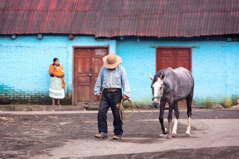 I took this picture of in the town of San Juan Parangaricutiro, México. This is a typical street scene of the country side in rural Mexico. Blue Livestock Mexico Michoacan Mule Rebozo Sombrero The Street Photographer - 2017 EyeEm Awards This Is Latin America