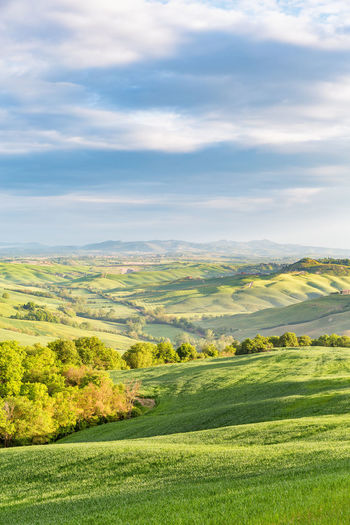Rural rolling landscape view with fields and groves of trees in a valley