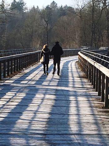 Pärchen geht Spazieren, weg, Holzbrücke, Flaucher, Winter, Same Way Talking Couple - Relationship Walking Two People Rear View Togetherness Full Length Adult Outdoors People Friendship