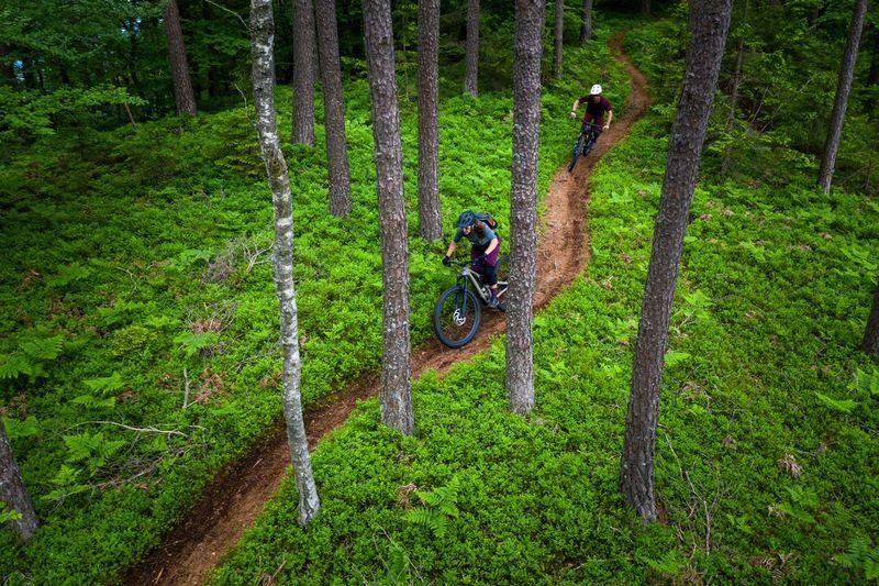 Aerial view of mountain biker in lush green forest, klagenfurt, austria.