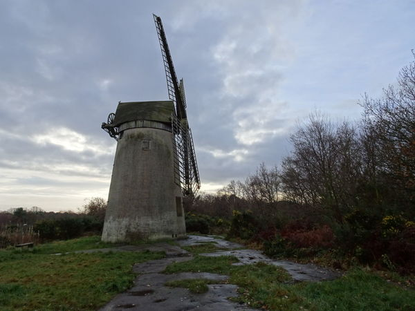 Traditional Windmill Environmental Conservation No People Outdoors Cloud - Sky Tranquility Built Structure Autumn Day trees and sky