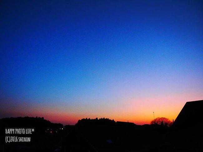 2016.01.05. * 昨日の夕空 * Goodnight 夕暮れ 日没後 空 グラデーション 空photo Sunset Sky Sky View S_shot Gradation Evening Sky Olympus Olympusomd Om_d E_M1 ダレカニミセタイソラ ファインダー越しの私の世界 写真撮ってる人と繋がりたい 写真好きな人と繋がりたい 空好きな人と繋がりたい Shinon_sunset_sky Shinon_sky