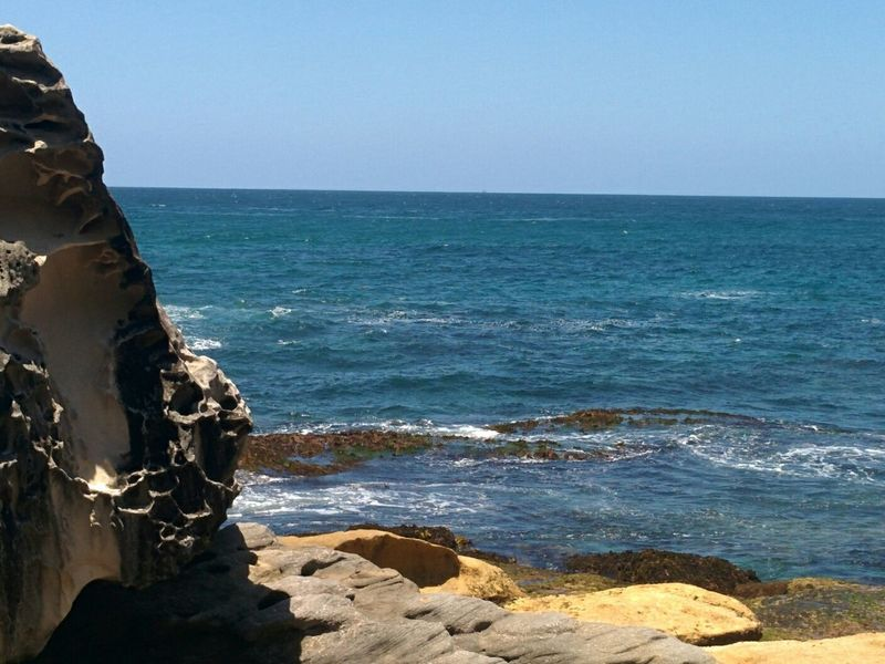 Seeing The Sights Bondi Beach Waves, Ocean, Nature