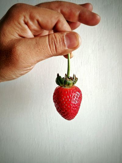 First strawberry from my kitchen garden Human Hand Red Fruit Holding Healthy Eating Food Human Finger Strawberry Ripe Fruit Ripe Strawberries Red Fruit Organic Food Hand Crimson Break The Mold Visual Feast
