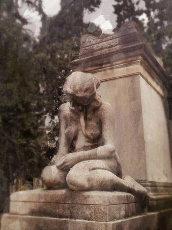 Signore del famedio 3 Cemetery NEM Memories NEM Painterly