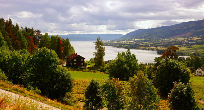 Landscape Norway Autumn Landscape_Collection Norway Panorama Scandinavia Travel Photography Beauty In Nature Built Structure Fjord Lake Lake View Landscape Landscape_photography Landscapes Mountain Nature No People Outdoors Panoramic Photography Scenery Scenics Tranquil Scene Tranquility Tree Water