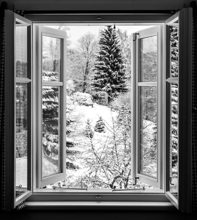 open EyeEm Best Shots ForTheLoveOfPhotography Snow ❄ Weather Wintertime Blackandwhite Bnw Close-up Cold Temperature Fortheloveofblackandwhite Glass - Material Growth Indoors  Looking Through Window Monochrome Nature No People Open Snow Tree Window Window Frame Window View Winter Shades Of Winter