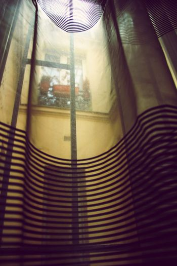 Through The Window Through The Curtain Lookingup Looking Out Of The Window Translucent Tranquility No People Capture The Moment From My Point Of View EyeEm Best Shots EyeEm Gallery Eye4photography  Home Interior Window View Window Light Light And Shadow Natural Light
