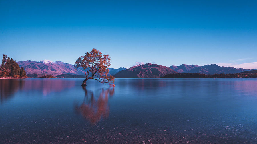 That Wanaka at sunset. So quiet and so incredible moment! Beauty In Nature Blue Clear Sky Cold Temperature Copy Space Idyllic Lake Mountain Mountain Range Nature No People Non-urban Scene Reflection Scenics - Nature Sky Snowcapped Mountain Tranquil Scene Tranquility Water Winter The Great Outdoors - 2018 EyeEm Awards