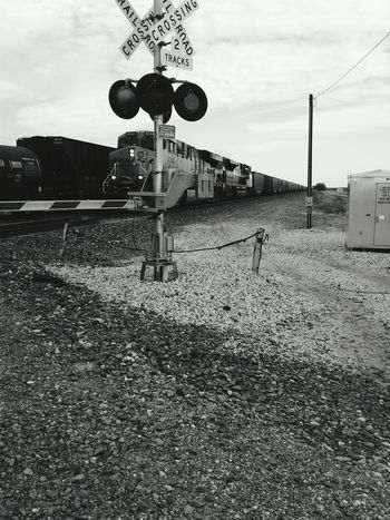 Trains Choo Choo Train