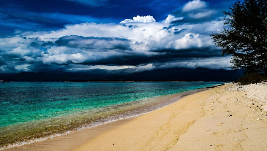 What a wonderful world Beach Sand Sea Blue Water Tree Dramatic Sky Sky Landscape Cloud - Sky Storm Cloud Summer Exploratorium