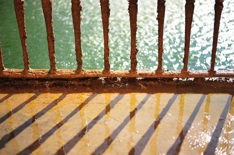 Nikon D700 Alcazar Close-up Day Garden Metal Nature No People Outdoors