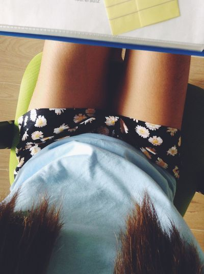 sunflower cornflower blue Sunflower Shorts Legs Home Cramming For Exams Hell Week