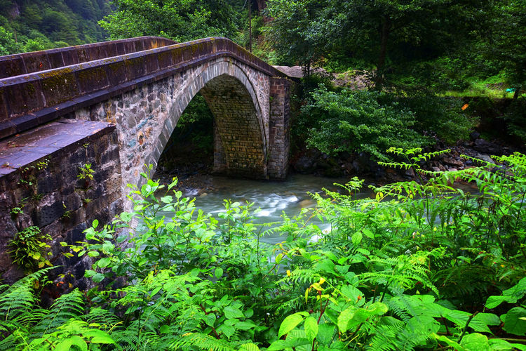 Turkey Arch