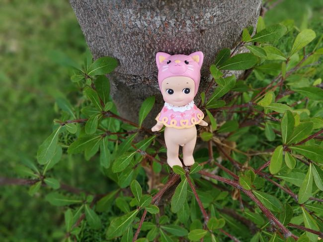Pink Color Close-up Cute Kewpie Kewpiedoll Thailand Figures Toy Doll Sonnyangelthailand Toy Photography Collection Figure Dolls Minifigures Sonnyangel Toyphotography Minifigure Valentine's Day