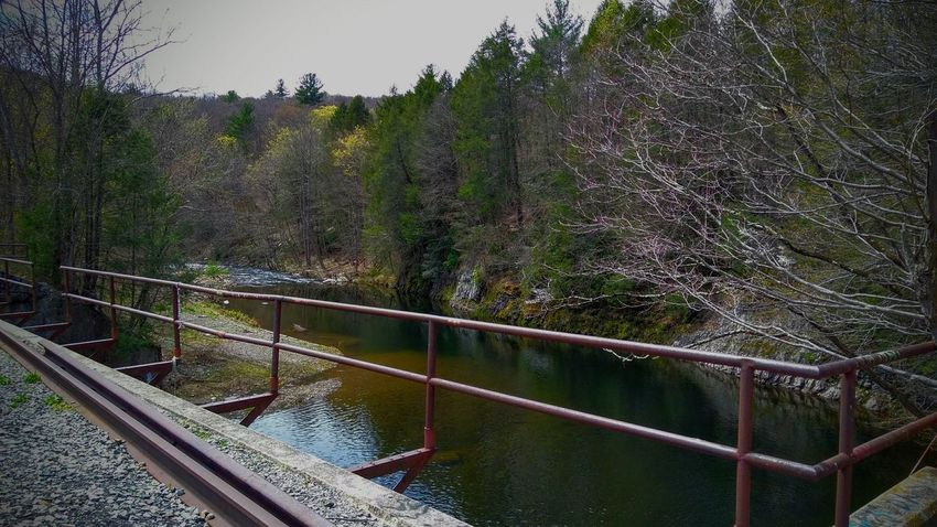 Railing Water Bridge - Man Made Structure Railroad Track River Train Bridge Tree No People Nature Outdoors Day Beauty In Nature Sky Analomink , Pa