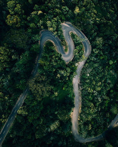 M-adeira DJI X Eyeem Copy Space DJI Mavic Pro Drone  EyeEm Best Shots Landscape_Collection Madeira Madeira Island Natural Beauty Nature Photography Aerial View Beauty In Nature Curve Dronephotography Forest Land Landscape Lush Foliage Nature Nature_collection Naturelovers Outdoors Plant Road Transportation Tree