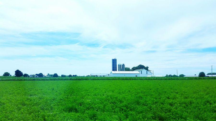 Farmland Farm