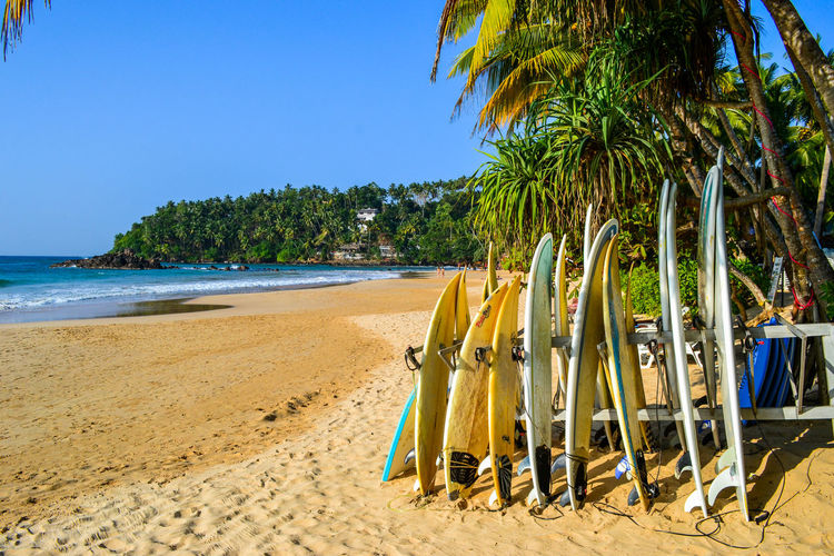 EyeEmNewHere Mirissa Mirissabeach Beach Beauty In Nature Blue Clear Sky Coconut Palm Tree Land Mirissa Beach Nature No People Outdoors Palm Tree Plant Sand Scenics - Nature Sea Sky Surfboard Tree Trip Tropical Climate Vacations Water