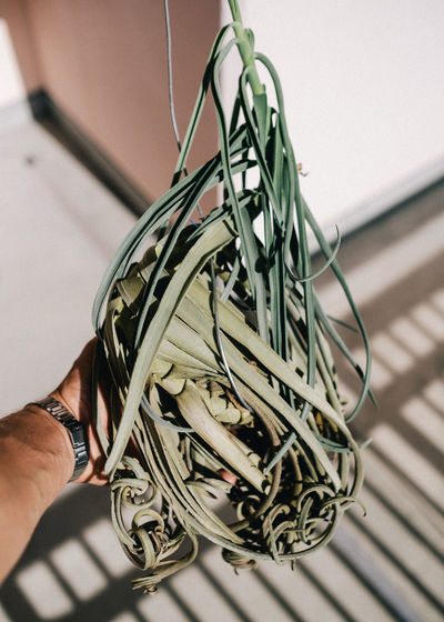 Close-up of man hand on cable