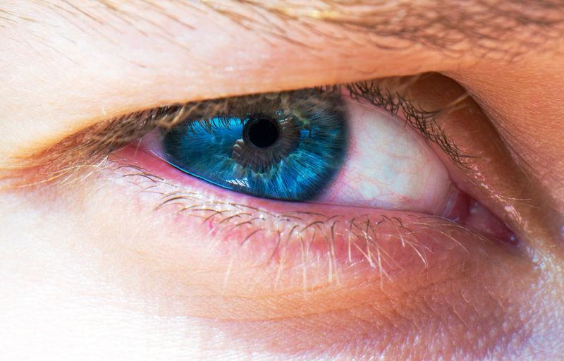 Portrait Of A Woman Woman Adult Close-up Day Eyeball Eyebrow Eyelash Eyelid Eyesight Human Body Part Human Eye Human Skin Indoors  Iris Iris - Eye One Person People Portrait Real People Sensory Perception Vision EyeEm Ready