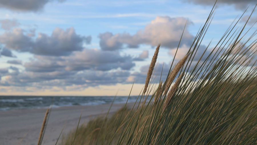 Dunes and