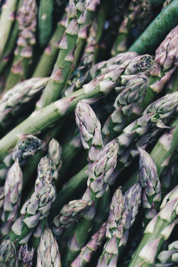 No People Full Frame Backgrounds Close-up Freshness Food And Drink Green Color Food Plant Day Healthy Eating Wellbeing Nature Large Group Of Objects Abundance Vegetable Market For Sale Outdoors Asparagus The Foodie - 2019 EyeEm Awards