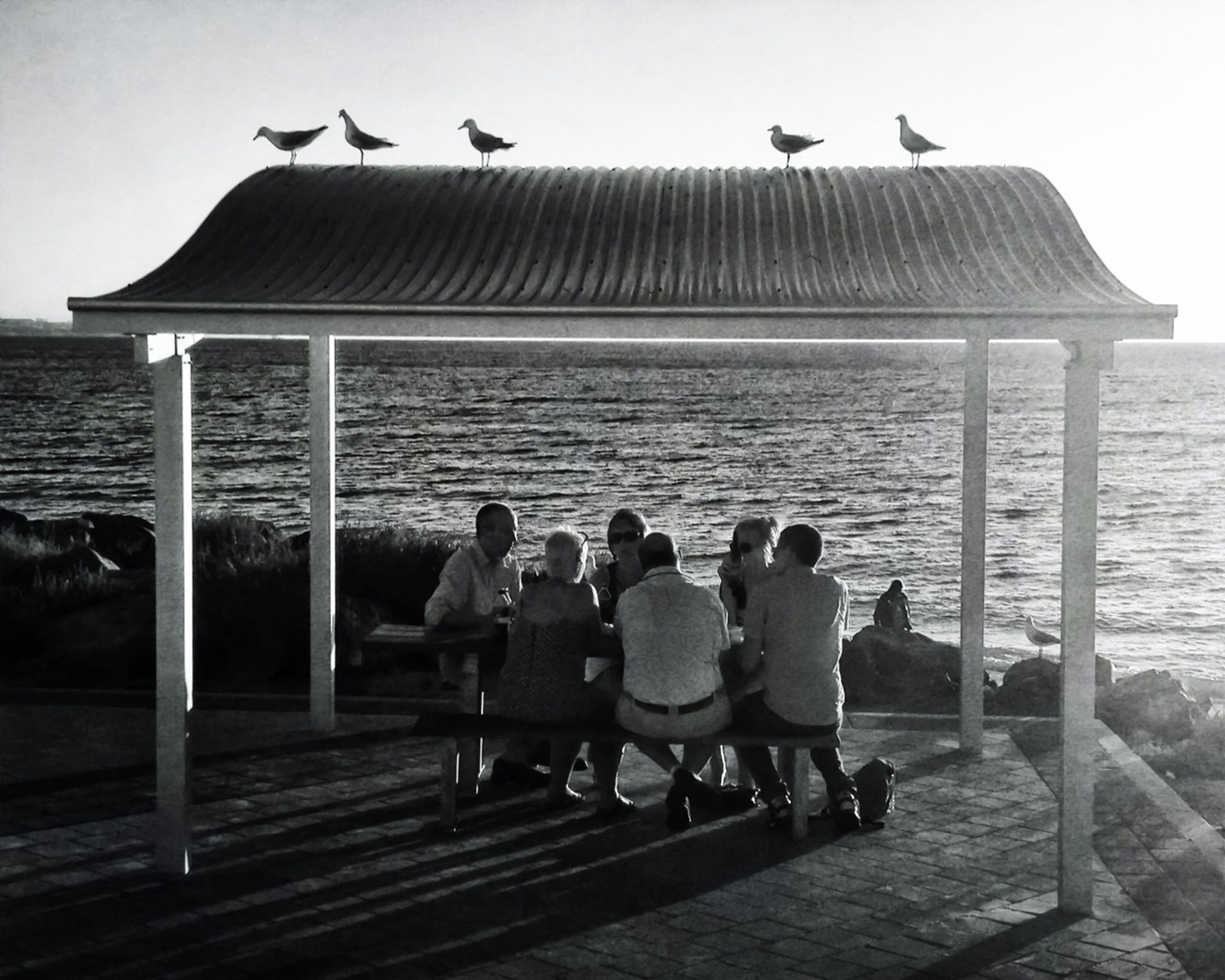 bird, animal themes, animals in the wild, wildlife, sea, water, flying, seagull, pier, togetherness, men, sky, person, flock of birds, perching, medium group of animals, clear sky, day