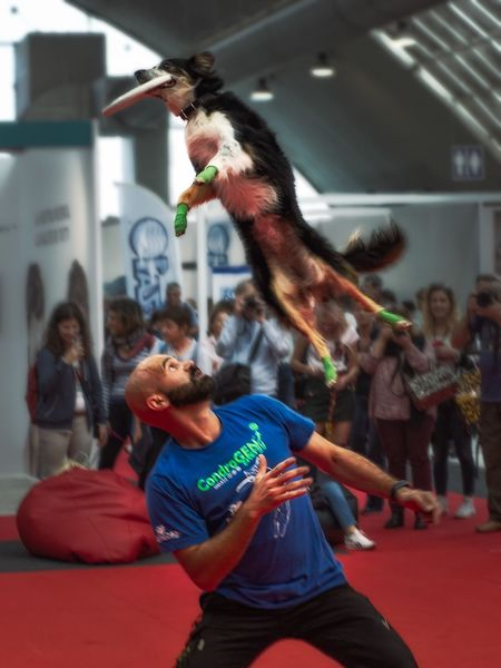 Discdog Group Of People Arts Culture And Entertainment Women Dancing Real People Indoors  Adult