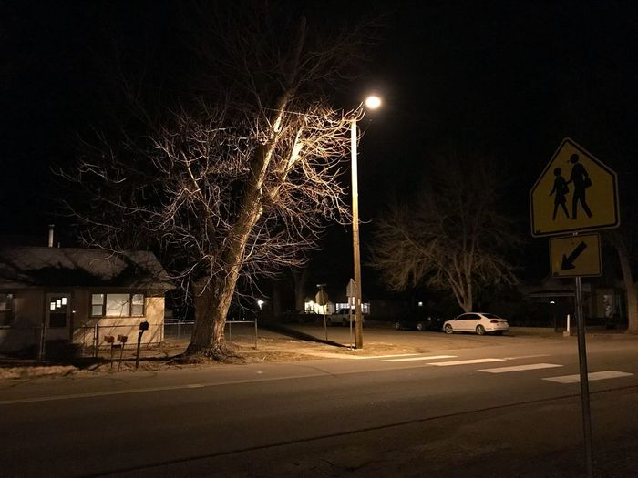 Street lamp. Streetlamp Street Light Night Illuminated Transportation Road Communication Street Road Sign Bare Tree Outdoors Tree No People