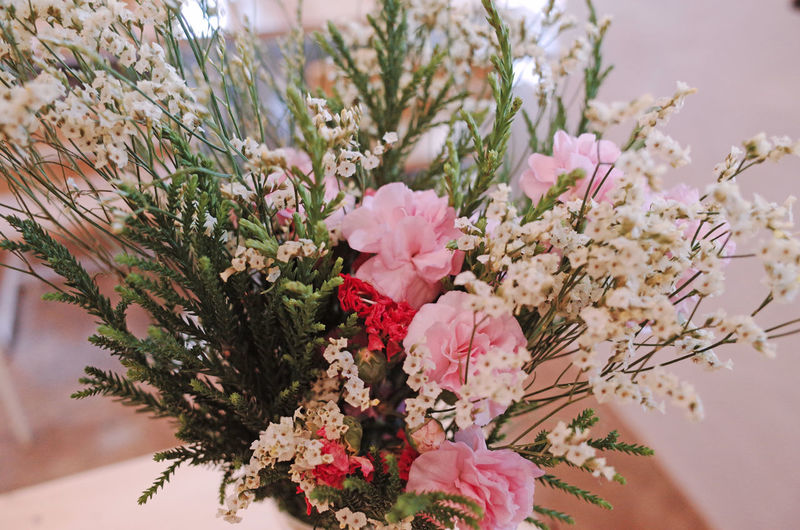 Flower Plant Flowering Plant Pink Color Freshness Beauty In Nature Growth Fragility Nature Vulnerability  Close-up Tree Petal No People Day Flower Head Selective Focus Outdoors Branch Inflorescence Cherry Tree Cherry Blossom Flower Arrangement Bouquet