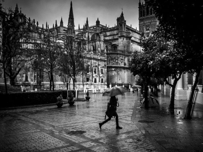 Architecture City Day Walking People Outdoors Rain Rainy Days RainyDay Rain☔ Sevilla Seville Seville,spain Seville's Cathedral Sevilla Spain Sevilla Andalucía Black And White Photography Built Structure Blackandwhite Black & White Blackandwhite Photography Black And White Blavk And White Blackandwhitephotography Black&white