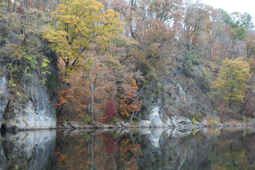 Rock formations on the river. Mirror Image, Reflection, Reflexion Nature Outdoors Remote River View Rock Formations Rocks Tranquil Scene Tree