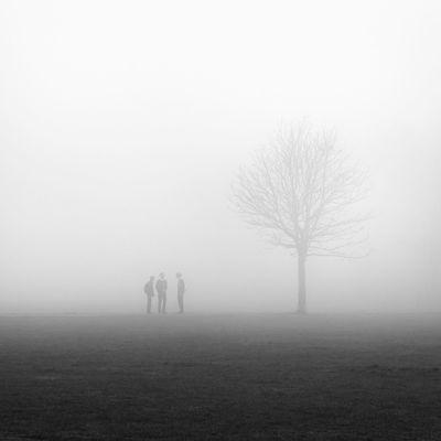 Atmospheric Mood Blackandwhite Calm Mist Silent Tranquil Scene Tranquility