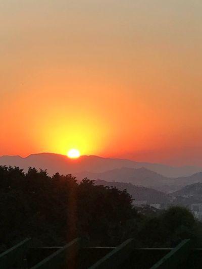 Por do Sol Orange Color Scenics - Nature Sun Plant