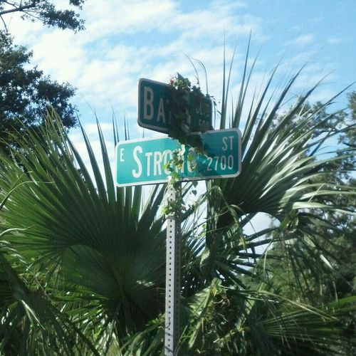 strong st is over grown..haha Enjoying The Sights Street Signs Check This Out