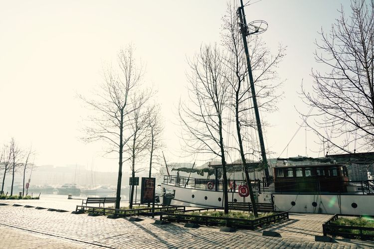 Morning Light Morning Mist Antwerpen March 2019 Dock Port Travel Quay Ship Sky Nature Tree Plant Clear Sky Built Structure Day Transportation Mode Of Transportation Outdoors Sunlight City Building Exterior No People Architecture