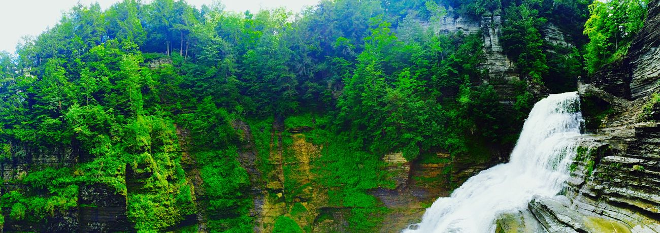 Cascata Gorge Water Green Muschio U.S.A. Fingerlakes