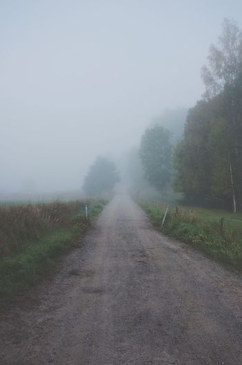 Autumn road MADE IN SWEDEN Nature_collection Foggy Morning Autumn Just Around The Corner