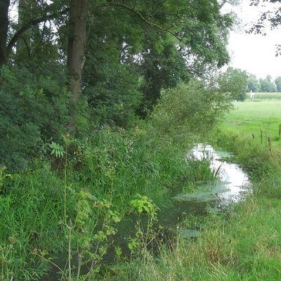 Geijsteren River Nature