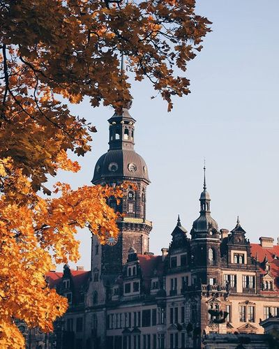 🌌🍁✴🍂✴🍁🌌 TBT  Throwback Dresden Germany Architecture Fall Autumn VSCO Vscocam Igercz Igers Instamood Picoftheday