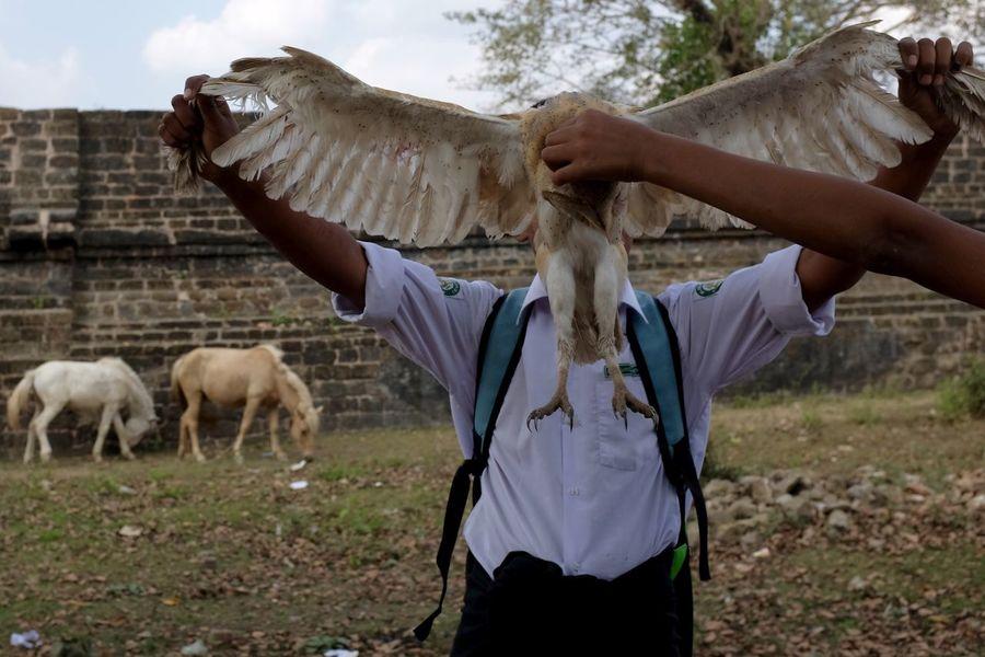 A schoolboy shows off his owl trophy. Arms ASIA Bird Boy Burma Dead Horses Myanmar Outdoors Owl Travel Trophy The Street Photographer - 2018 EyeEm Awards