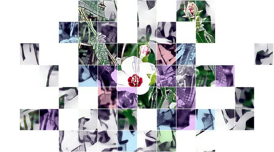 Just because I want to use it as my cover. ☺✌ Flower Macro HDR Grid Pattern No People White Background Day Flowers Leaves Nature Beauty In Nature Art Artsy Abstract Geometry Geometric Shape Geometric Shapes Geometric Squares Shapes Colorsplash Leaves🌿 EyeEm Nature Lover Artistic