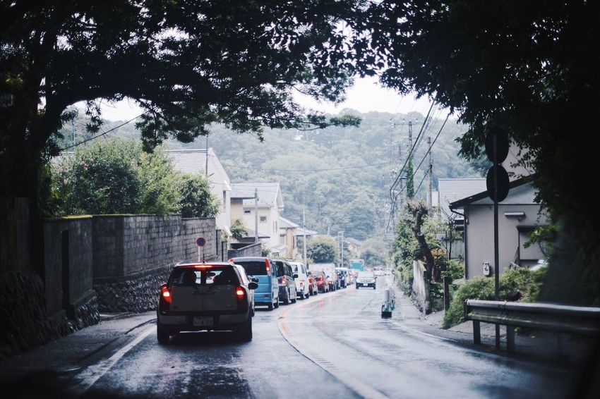 Japan Snap Light And Shadow Vscocam VSCO Streetphotography Nature Transportation Tree Mode Of Transportation Motor Vehicle Car Plant Land Vehicle