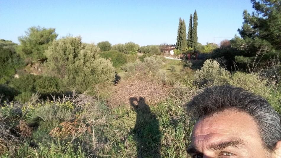 Shadows & Lights Nature Selfie ✌ Woods